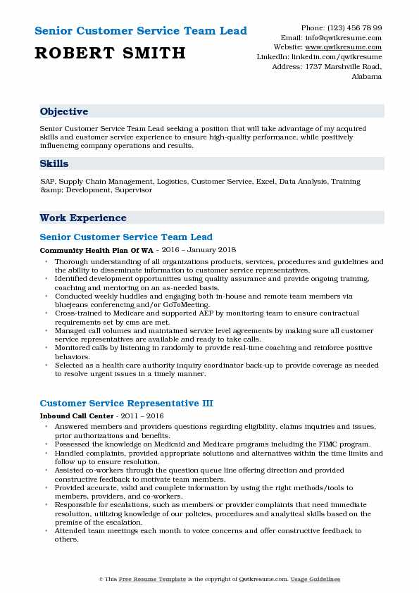 Senior Customer Service Team Lead Resume Format