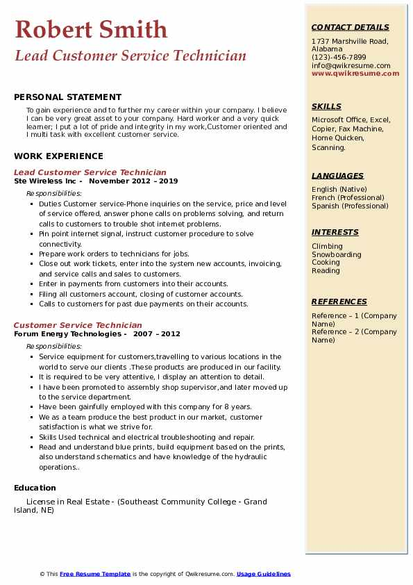 Lead Customer Service Technician Resume Example