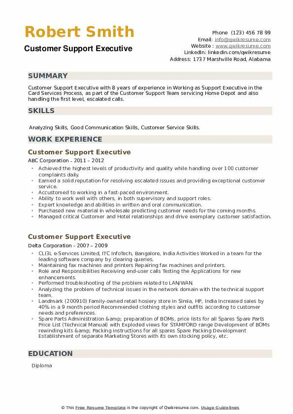 Customer Support Executive Resume example