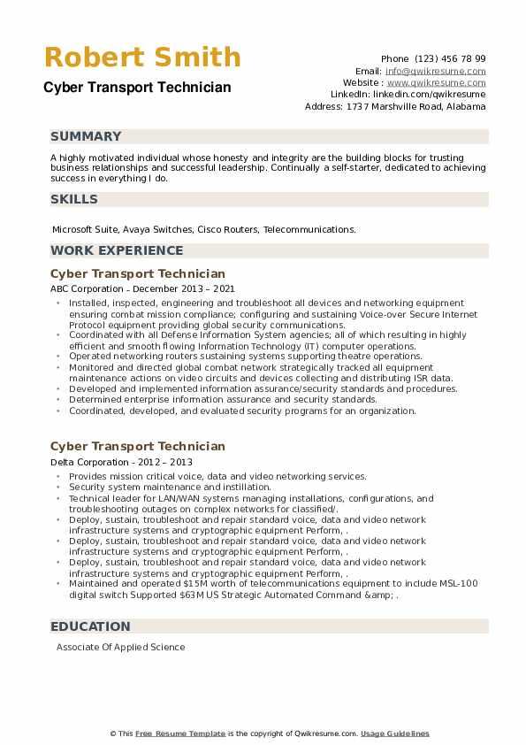 Cyber Transport Technician Resume example