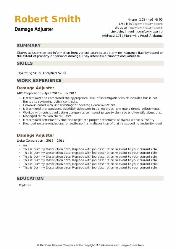 Damage Adjuster Resume example