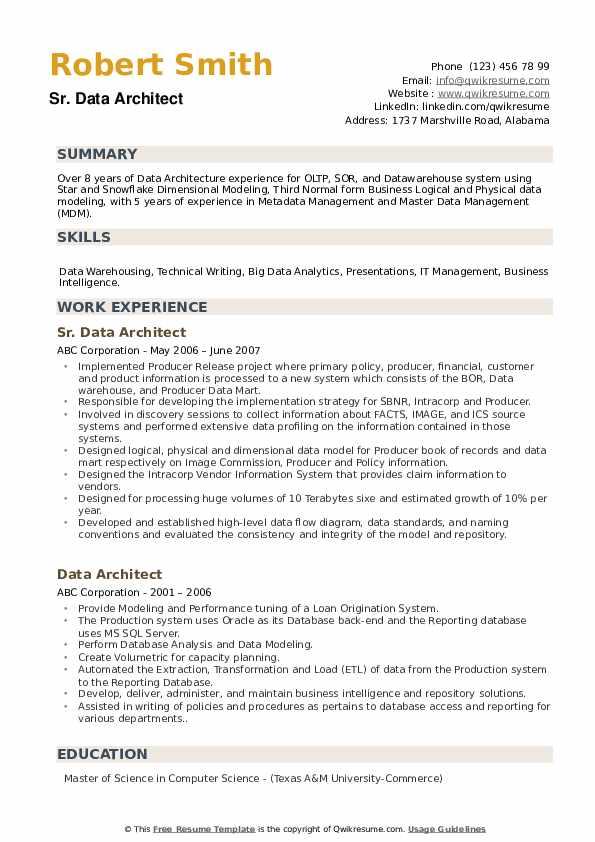 Senior Data Architect Resume example