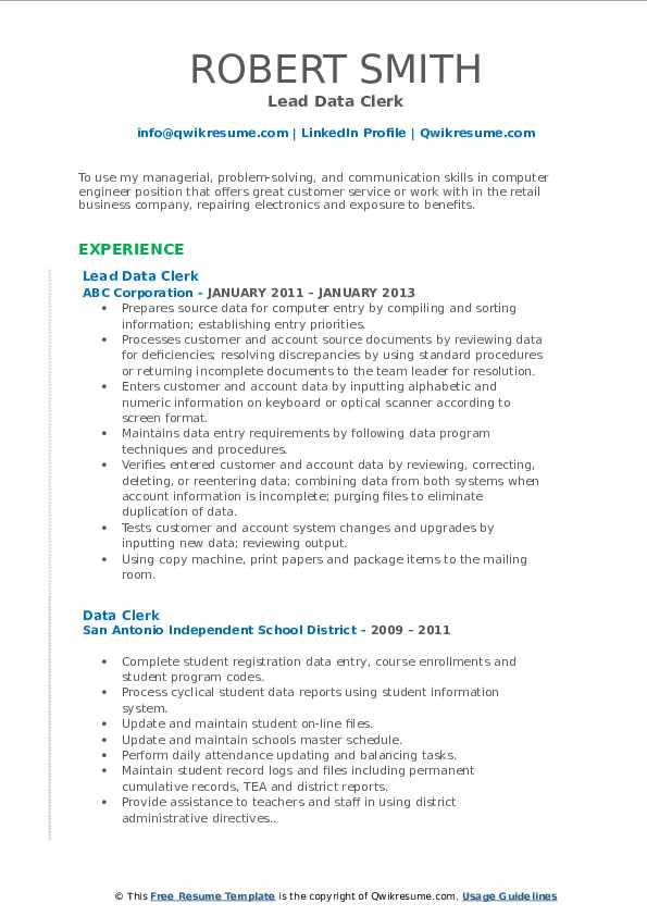 Lead Data Clerk Resume Template