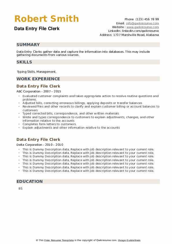 Data Entry File Clerk Resume example