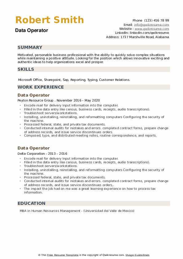 Data Operator Resume example