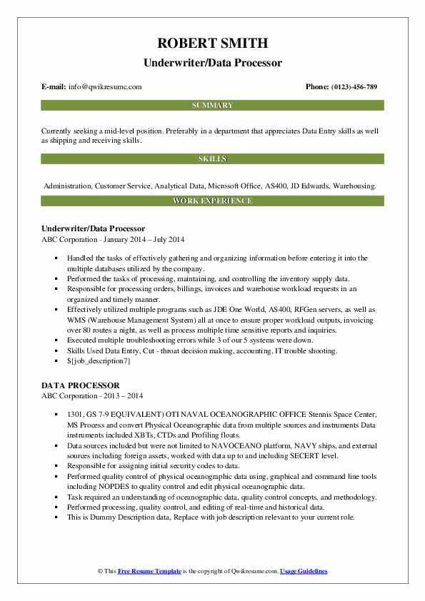 Underwriter/Data Processor Resume Example