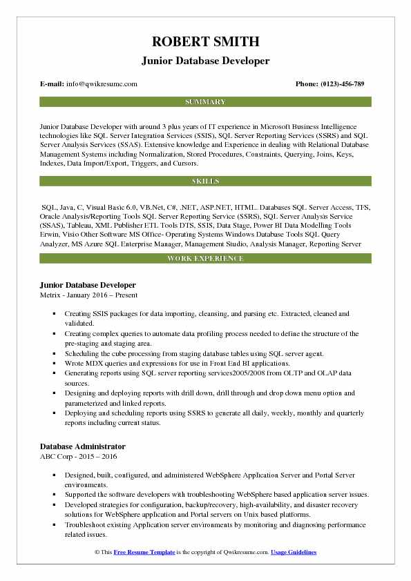 Junior Database Developer Resume Format