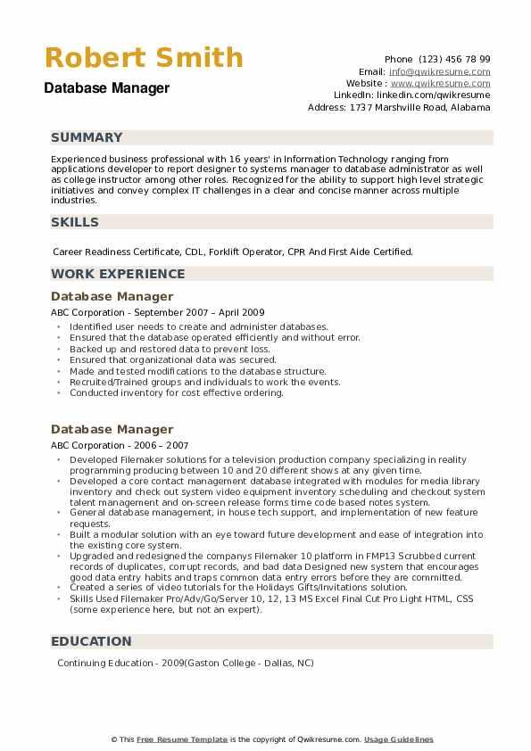 Database Manager Resume example