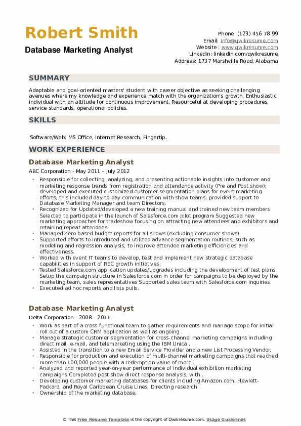 Database Marketing Analyst Resume example