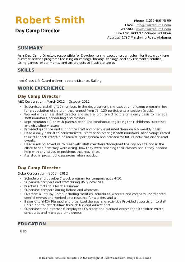 Day Camp Director Resume example
