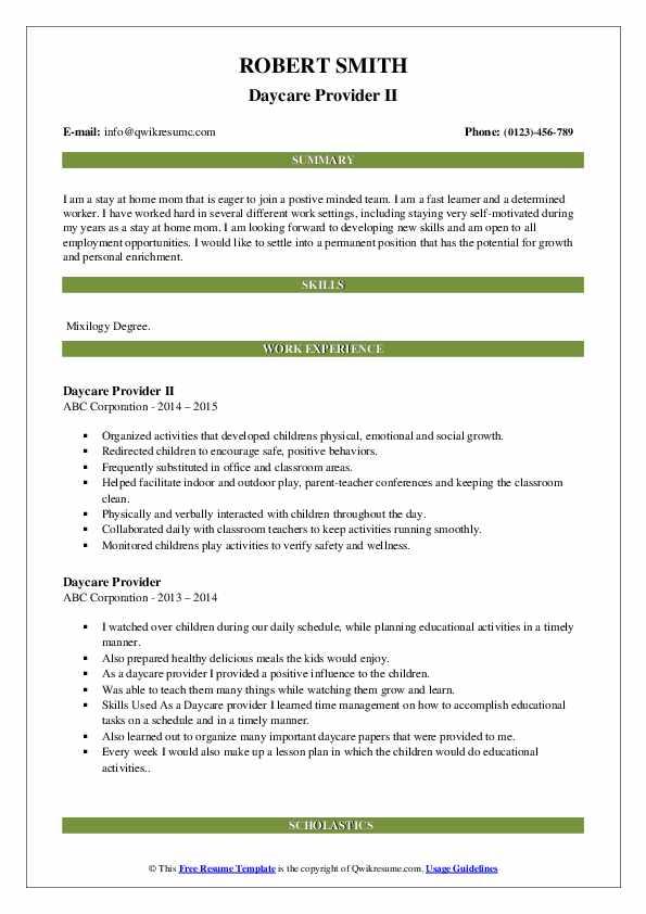Daycare Provider II Resume Template