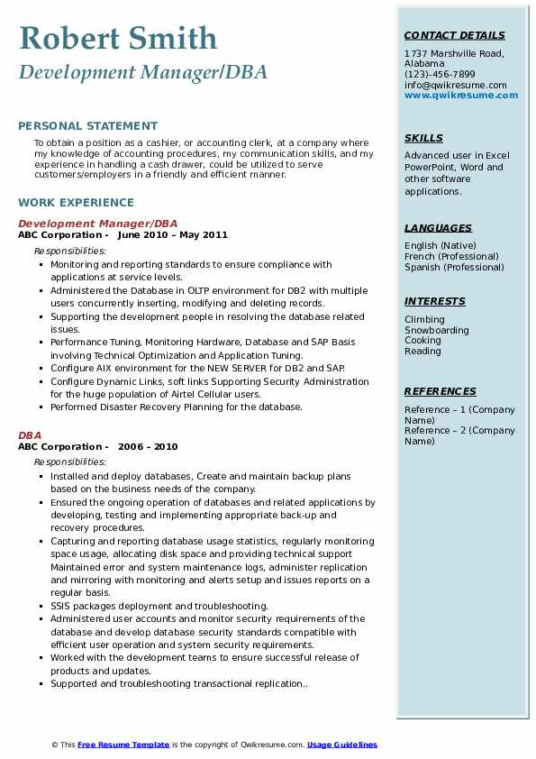 Development Manager/DBA Resume Format