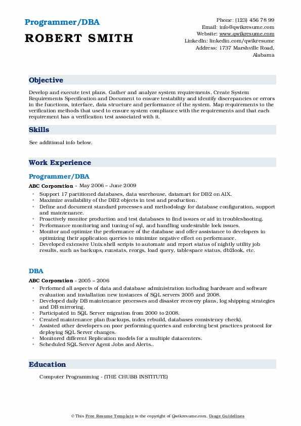 Programmer/DBA Resume Example