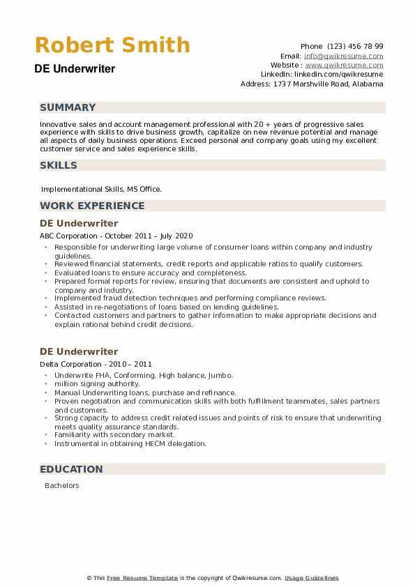 DE Underwriter Resume example
