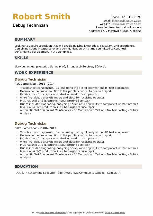 Debug Technician Resume example