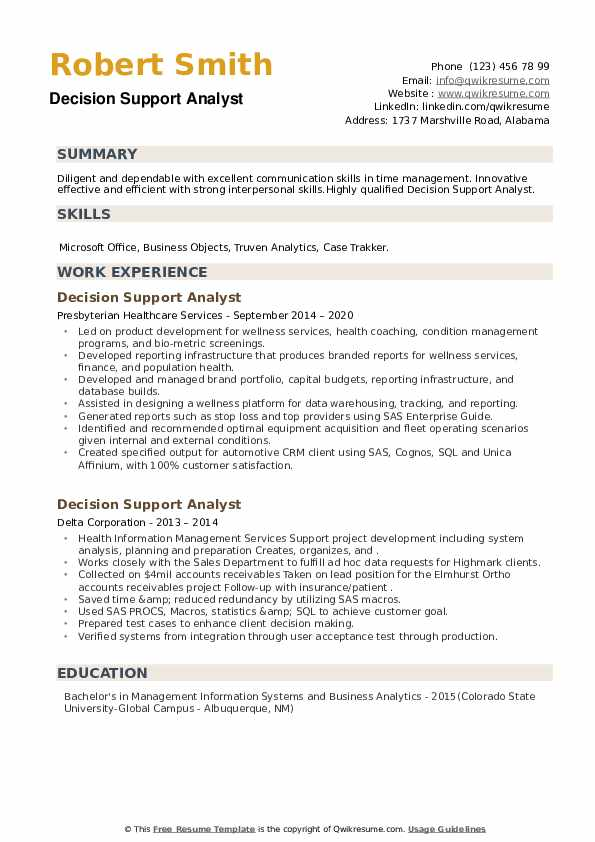 Decision Support Analyst Resume example