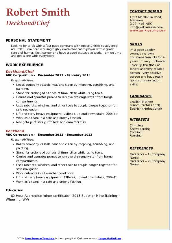 Rapid Miner Resume Template