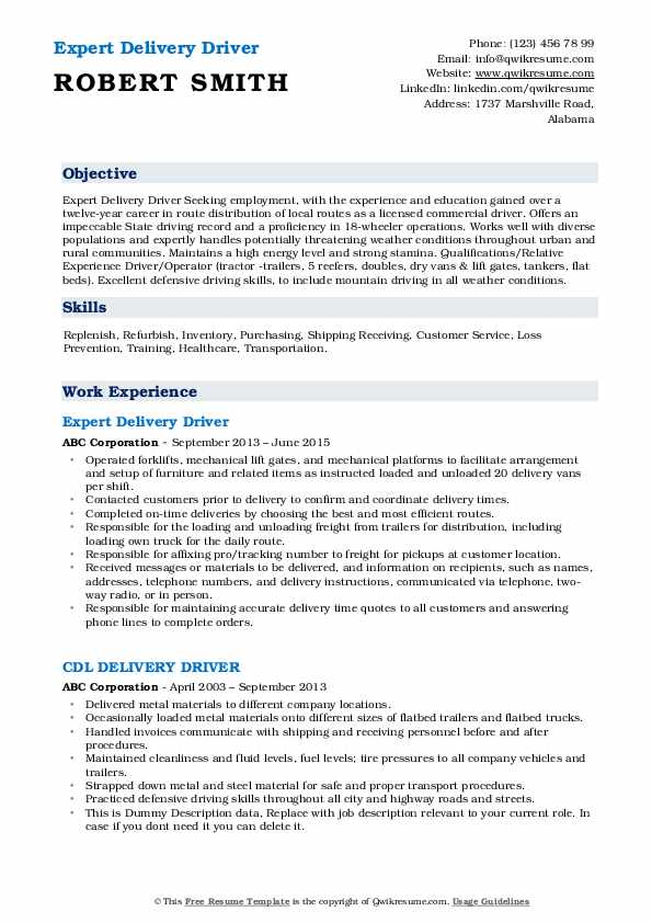 Expert Delivery Driver Resume Template