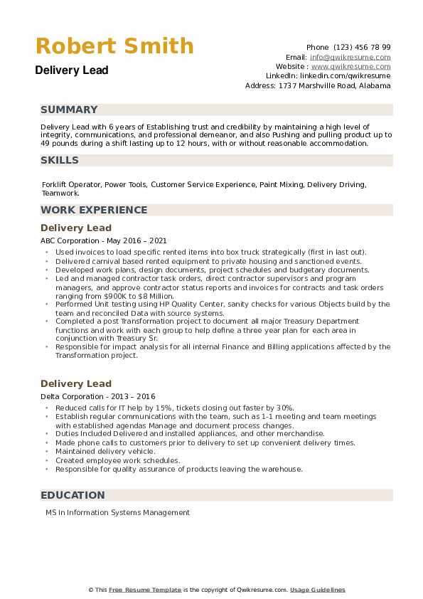 Delivery Lead Resume example