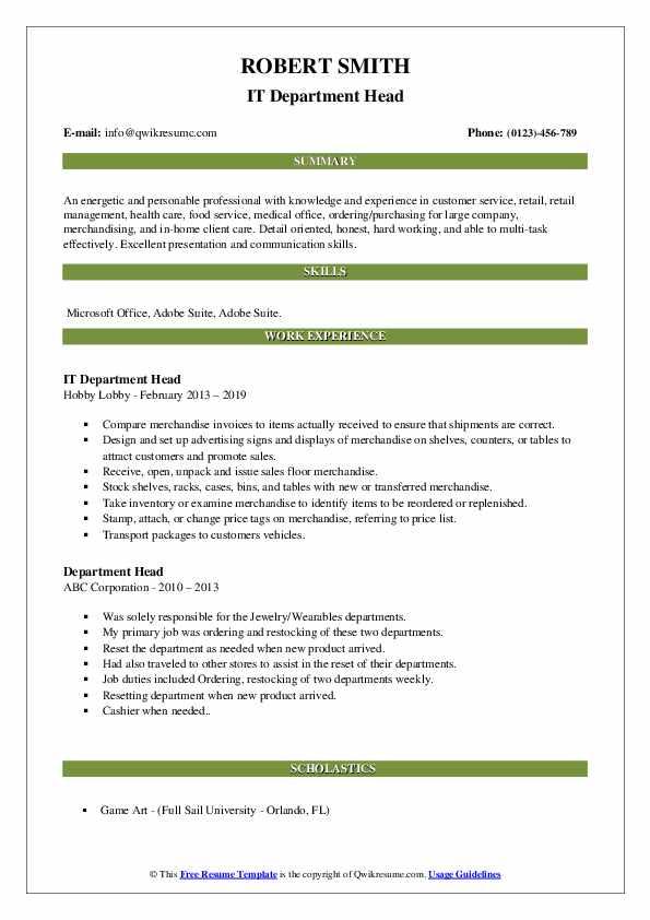 IT Department Head Resume Sample
