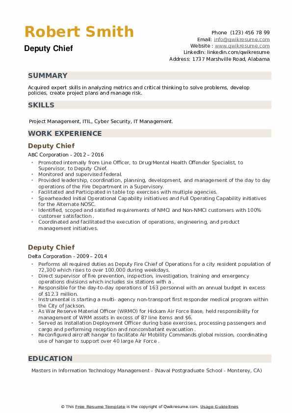 Deputy Chief Resume example