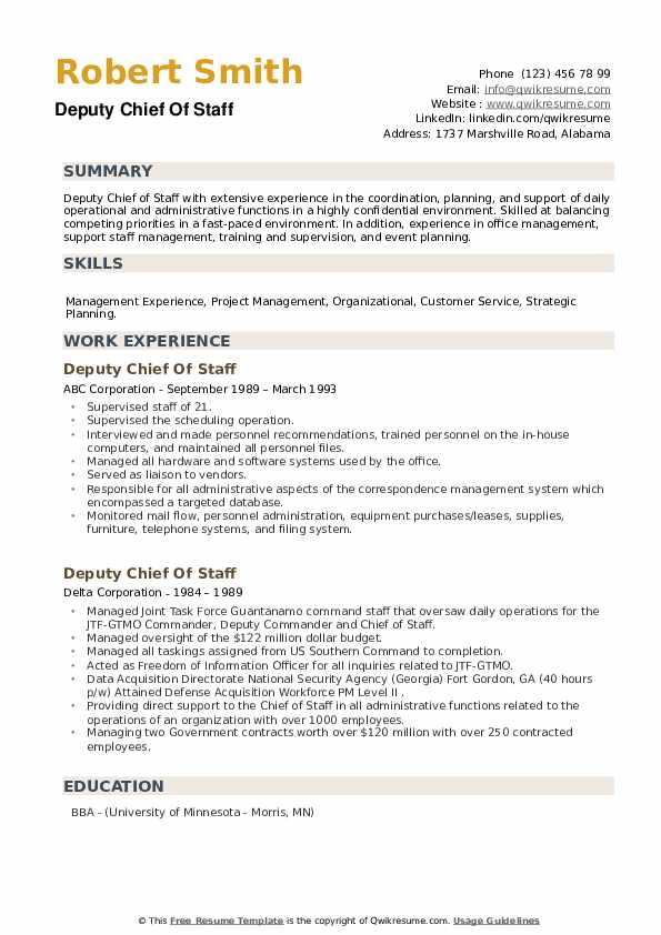 Deputy Chief Of Staff Resume example