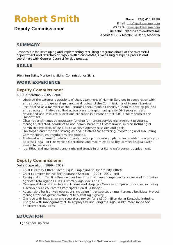 Deputy Commissioner Resume example