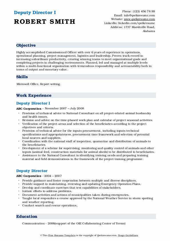 Deputy Director I Resume Template