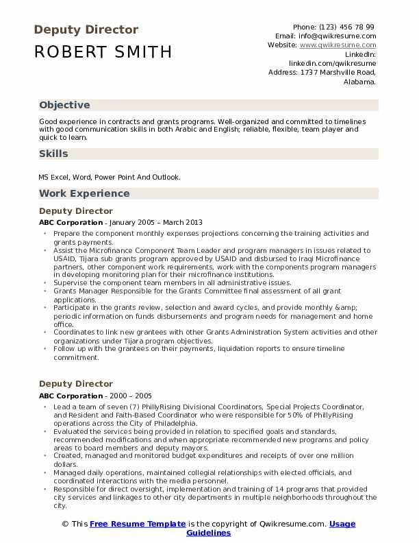 Deputy Director Resume example
