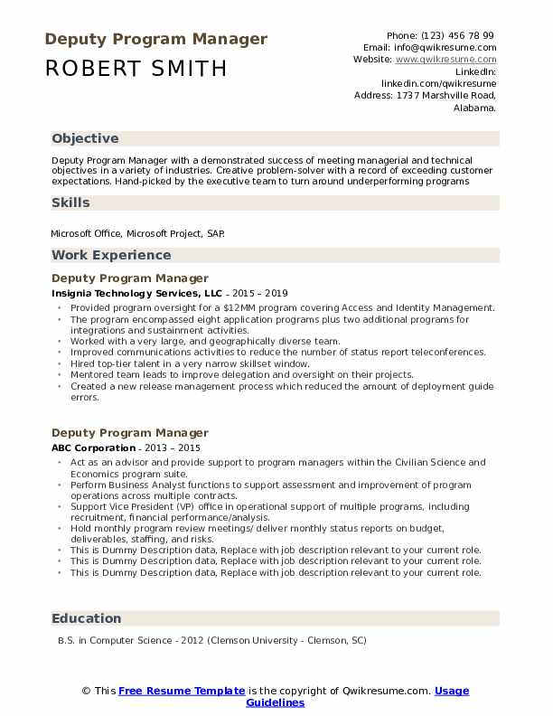 Deputy Program Manager Resume example