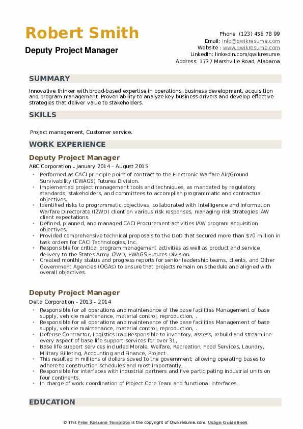 Deputy Project Manager Resume example