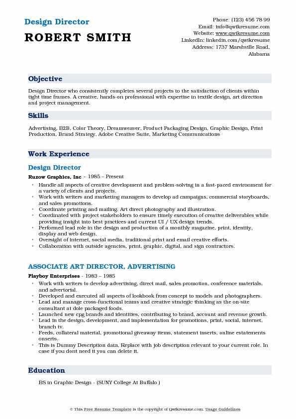 Design Director Resume Template