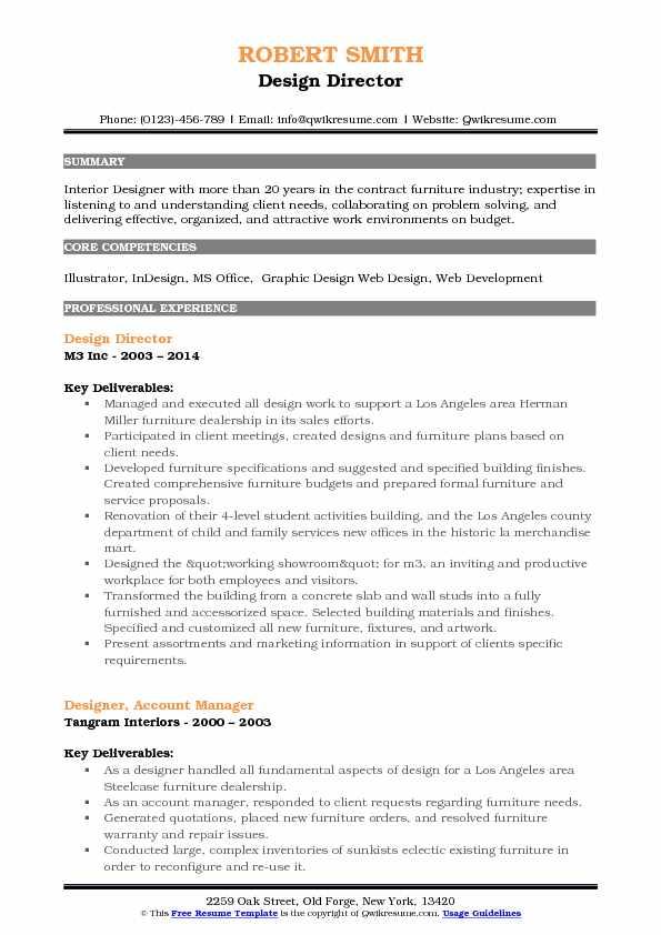 Design Director Resume Model