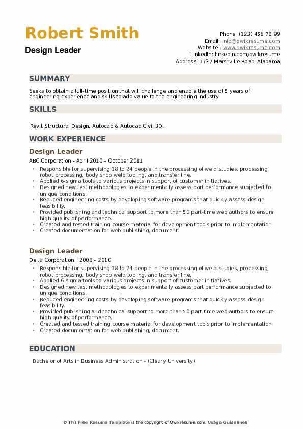 Design Leader Resume example
