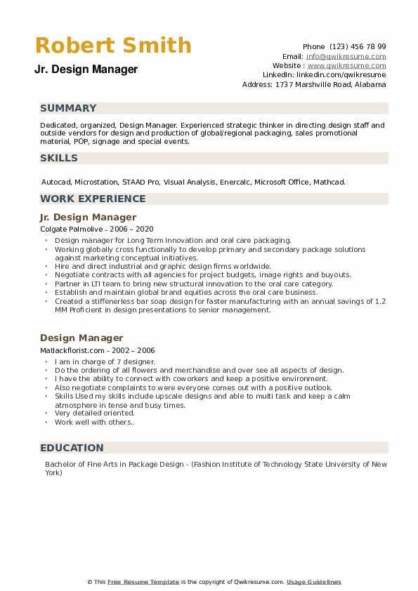 Creative Consultant Resume example