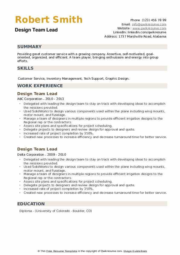 Design Team Lead Resume example