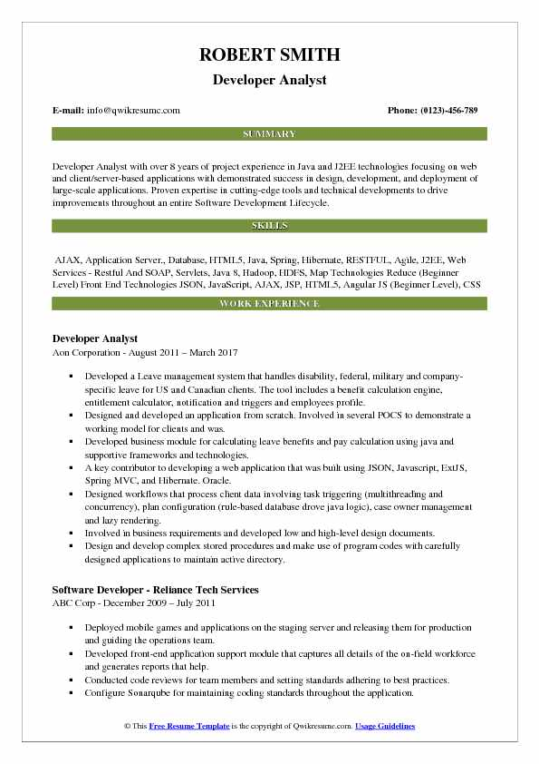 Developer Analyst Resume Example