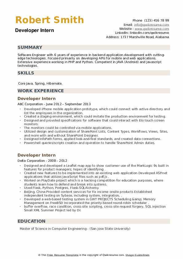 Developer Intern Resume example