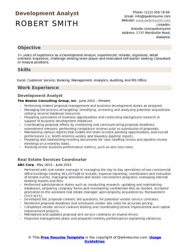 Development Analyst Resume Model