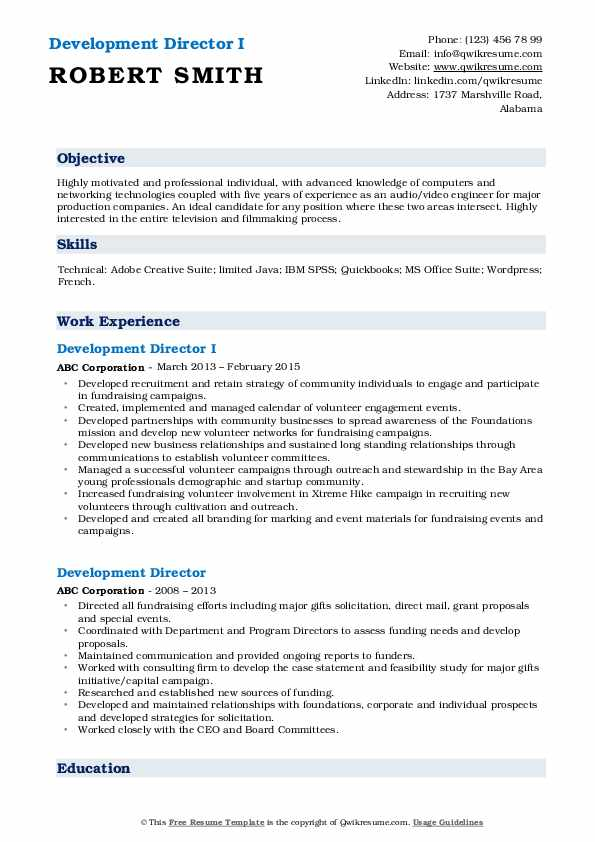 Development Director I Resume Example