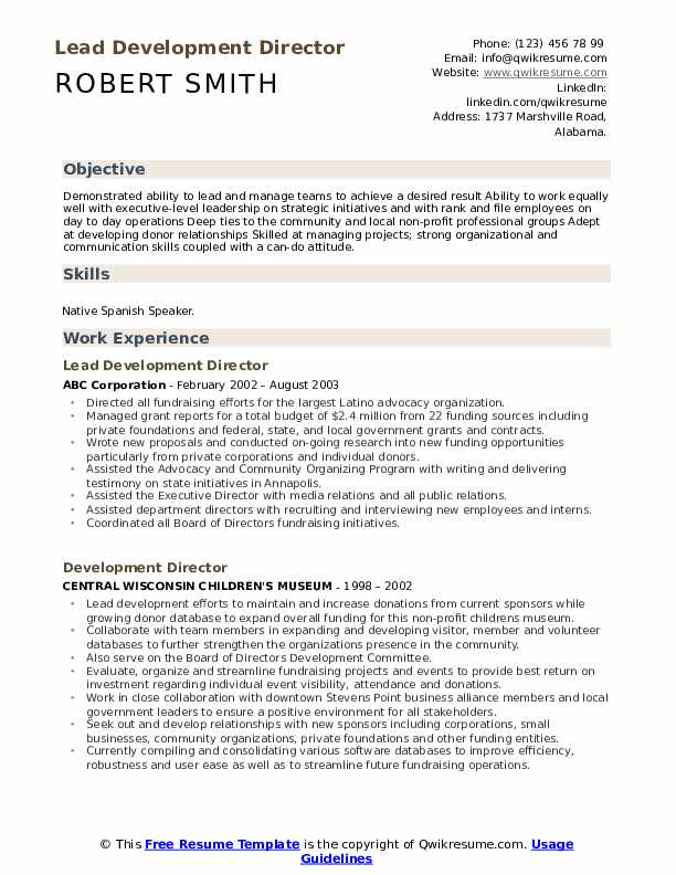 Lead Development Director Resume Model