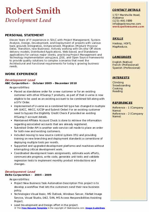 Development Lead Resume example