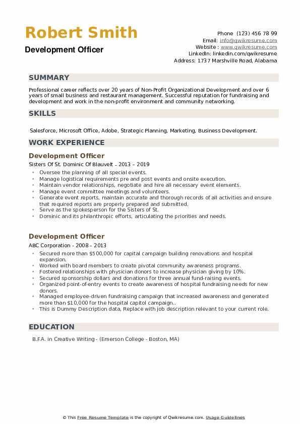 Development Officer Resume example
