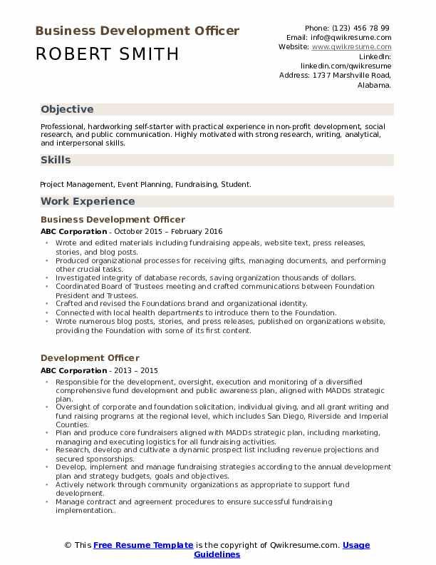 Development Intern Resume example