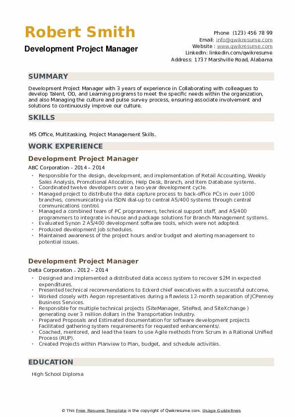 Development Project Manager Resume example