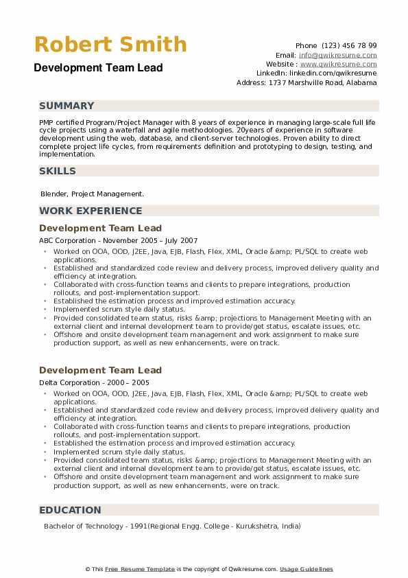 Development Team Lead Resume example