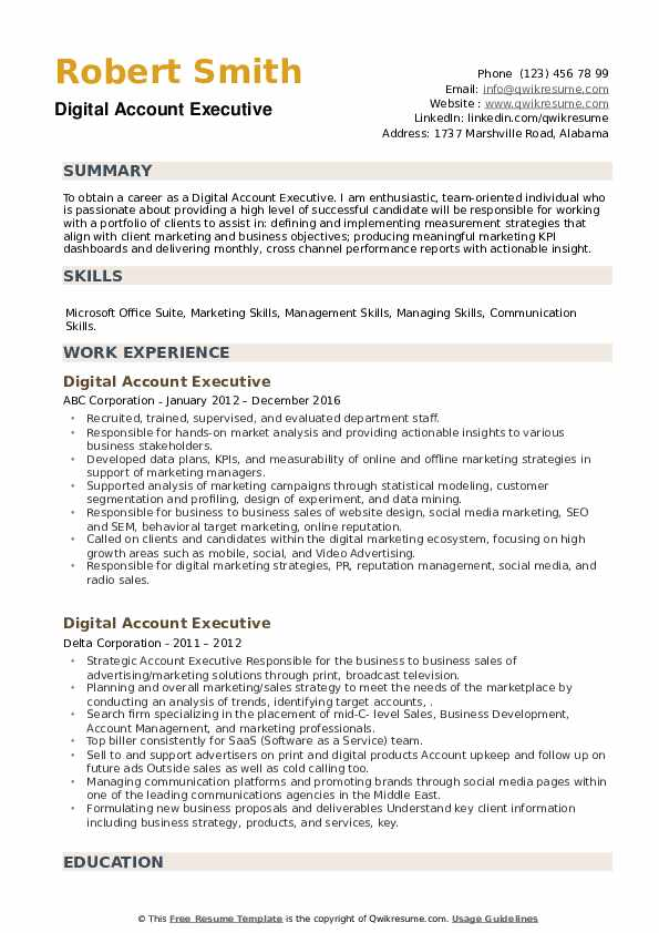 Digital Account Executive Resume example
