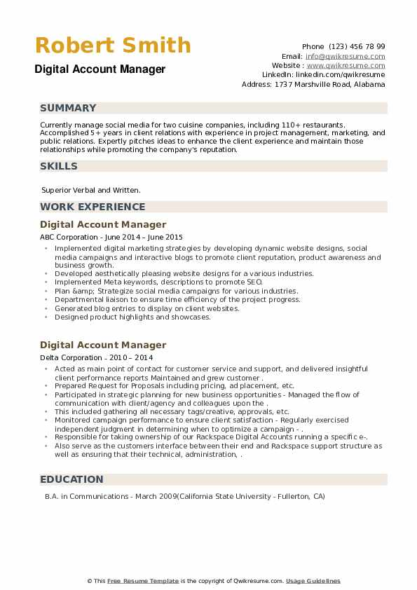 Digital Account Manager Resume example