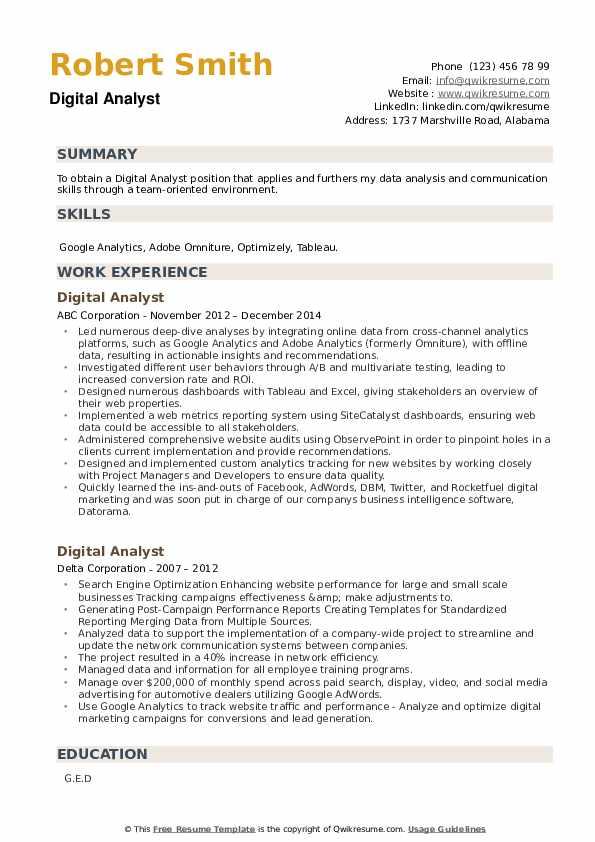 Digital Analyst Resume example
