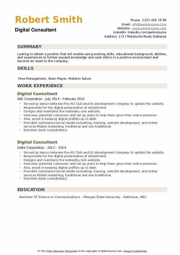 Digital Consultant Resume example